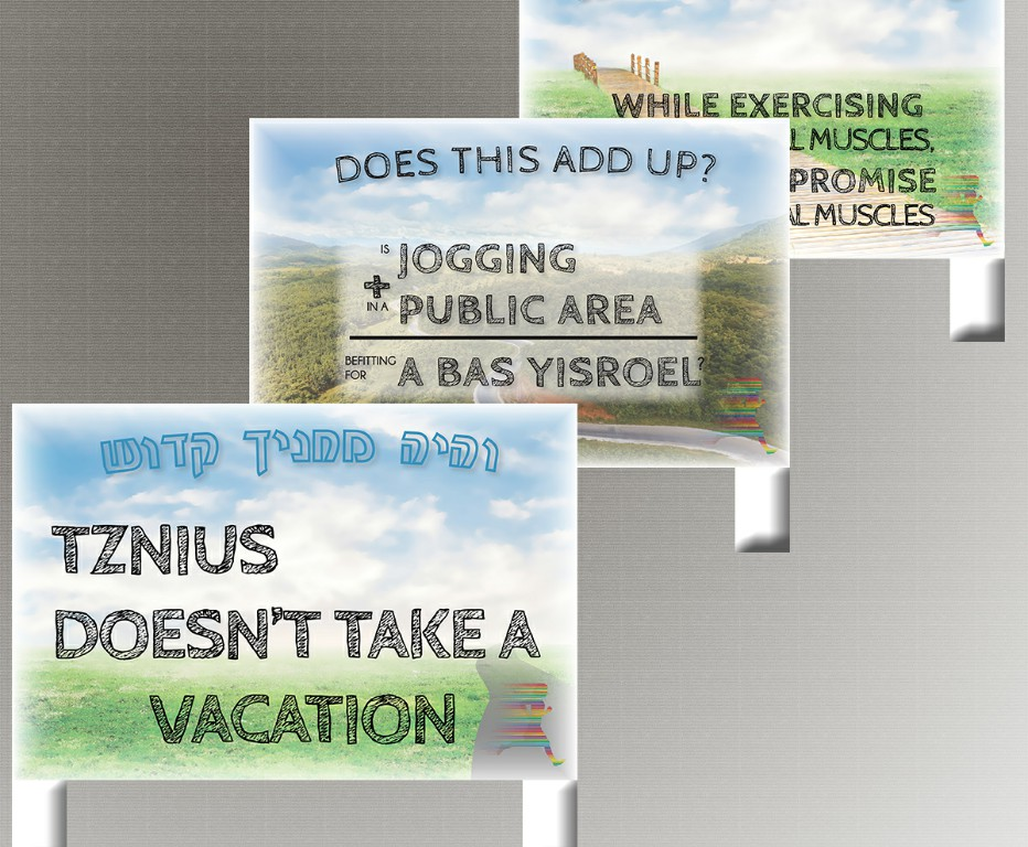 Yard Signs for Tznius Campaign